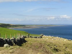 Looking back towards Maryport from the Trail