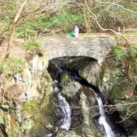 dunskey gardns bridge near portpatrick